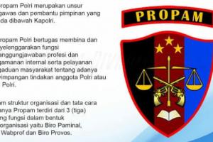 Ditpolair Dilaporkan ke Divpropam