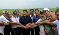 Sumsel Bakal Cetak 250 Ribu Hektar Sawah Baru