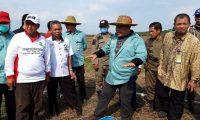 Anggota DPRD OI Prakarsai Tanam Padi di Lahan Tidur
